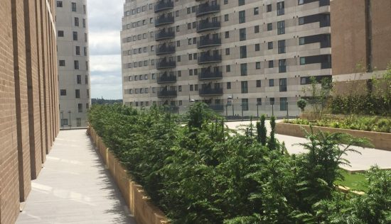 User submitted image of Allegro Living, B7
