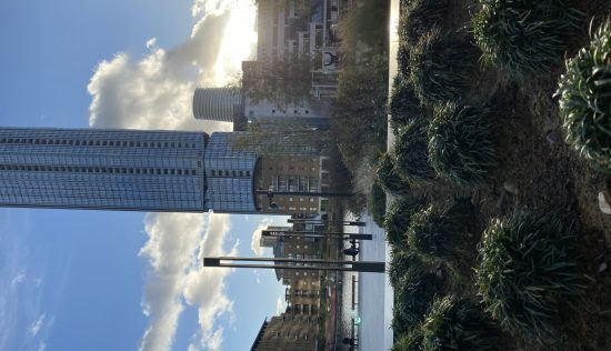 User submitted image of Dollar Bay, E14